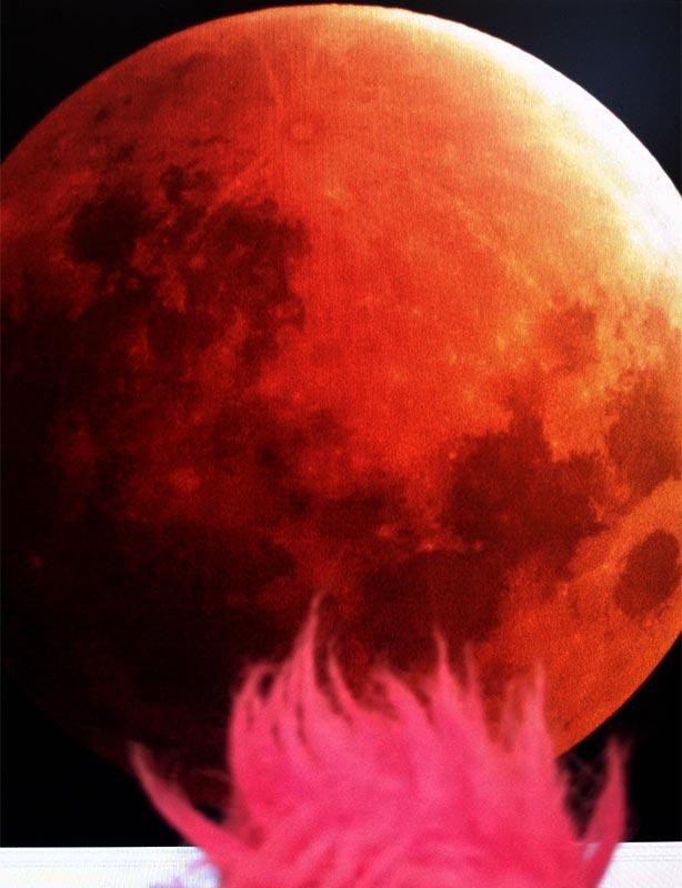 bloodmoon12